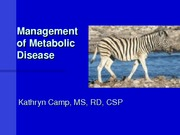 Metabolic disease_Camp