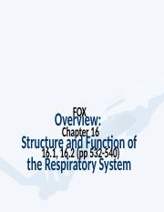 #3 Structure and Function of Respiratory System (FOX 16 part).ppt