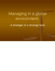 Managing in a global environment by som