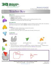 EnzymeTeachersKey_forWeb1.pdf