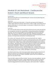 Module_03_Lab_Worksheet.docx