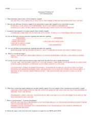 311C F09 Worksheet_7+A