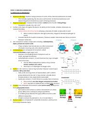 IB Biology Topic 2 Notes.pdf