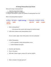 AP Biology Photosynthesis Quiz Review