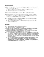 Study_Questions_Photosynthesis