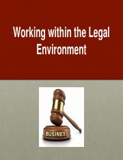 Working within the Legal Environment .pptx