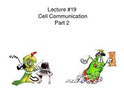 BB_LECTURE-19_Cell Communication-Part 2