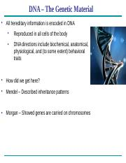 Chapter 16 - DNA(2).pptx