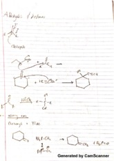 chem 3770 ablehydes notes