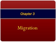 chapter_3_-_migration