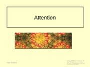 lecture 5 - attention1