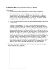 Bleach Oxidation Worksheet