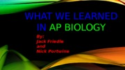 Copy of AP Bio Presentation