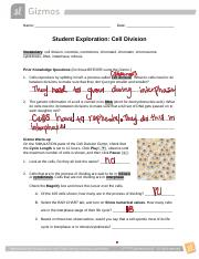 Copy of Lab on Gizmo on Cell Division Students worksheet ...