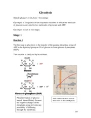 9. Glycolysis and Gluconeogenesis.pdf