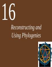 Ch16 Lecture Reconstructing and Using Phylogenies