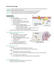 Endocrine Physiology.docx