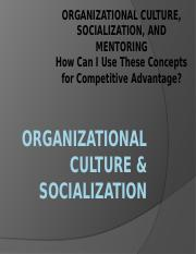CH 11 Org Culture & Socialization Slides(1)