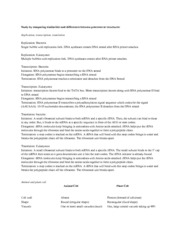 TRANSCRIPTION and TRANSLATION WORKSHEET1 WITH KEY ...