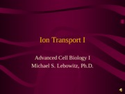 Ion Transport I