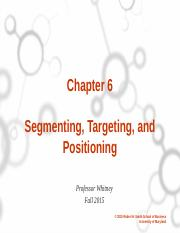 Ch. 6 Segmenting, Targeting, Positioning Canvas