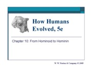 11_from_hominoid_to_hominin-1