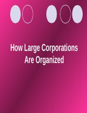 How Large Corporations Are Organized.ppt