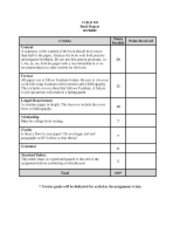 Rubric- Book Critique
