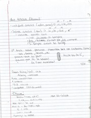 Articles and Numbers Notes