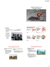 Lecture28 1114 DOrazio Lecture 10 ecology and ecosystems STUDENT - 6 per page (1)