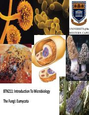 BTN+211+-+The+Fungi+_Week+14_.pdf