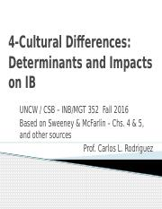 S&M 4 - Cultural Differences and Implications for IB.pptx