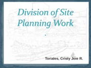division of site planning work.ppt