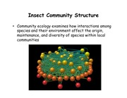 Lecture 18 - Community Structure