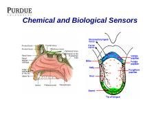 Chemical and Biological Sensors [Compatibility Mode]