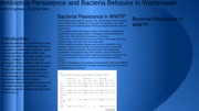 Bacteria and Antibiotic Persistence in Wastewater