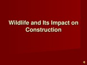 E-Endangered-Wildlife-VoiceOver