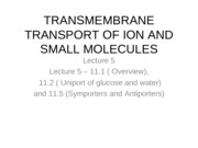Lecture 5 - Transmembrane transport of ions and small molecules