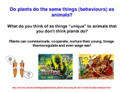 Are Plants Just Like Animals