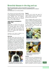 Bronchial disease in the dog and cat