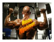 LectureMuscle Web 10