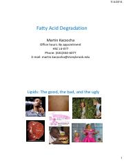 Fatty Acid Breakdown