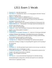 L311 Exam 1 Vocab