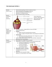 6._The_Muscular_System_1.docx