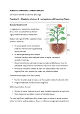 Practical 7 – Plasticity of shoot & root systems of Flowering Plants