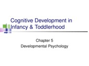 Ch 5- Cognitive Development in Infancy & Toddlerhood