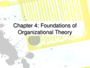 Ch 04 foundations of org theory