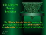 Effective Rate of Protection.s02