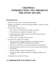 Ch01WordLectureOutline
