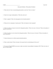 311C_F10_Worksheet_10_Photosynthesis